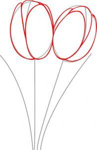 ve-hoa-tulip-2