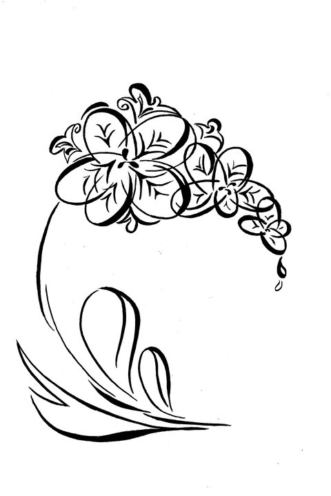 Vẽ cách điệu Hoa lan