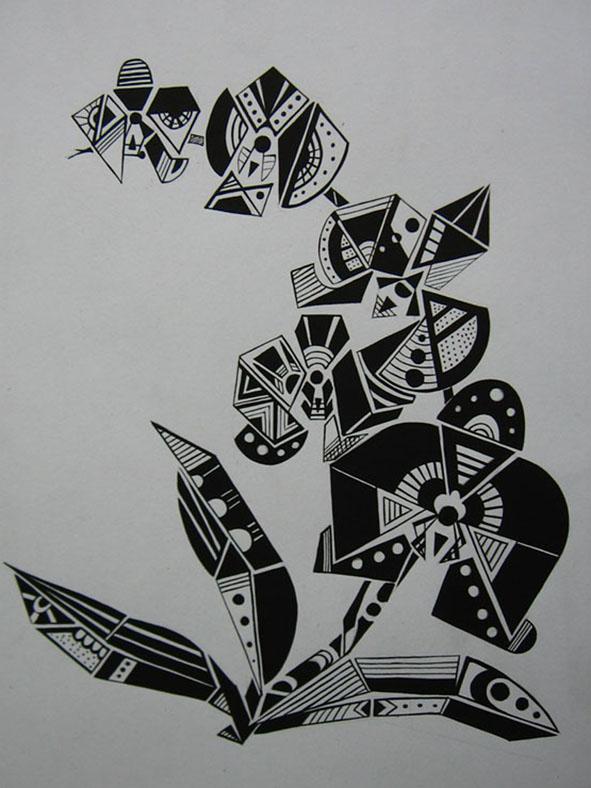 Vẽ cách điệu Hoa lan (bước 3)