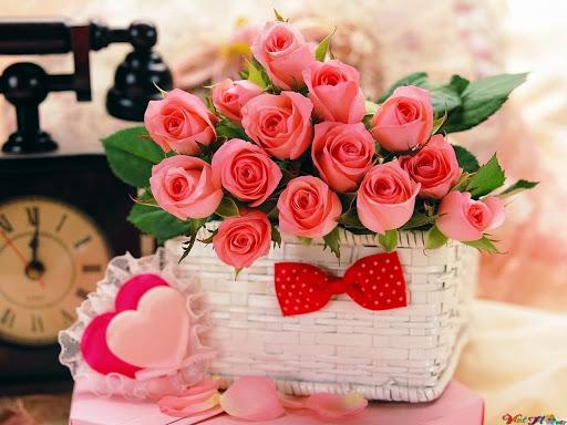 Hoa hồng ngày lễ tỉnh nhân