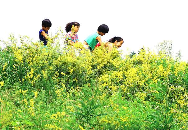các em bé chơi đùa cùng hoa