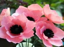 Hoa anh túc bằng giấy nhún