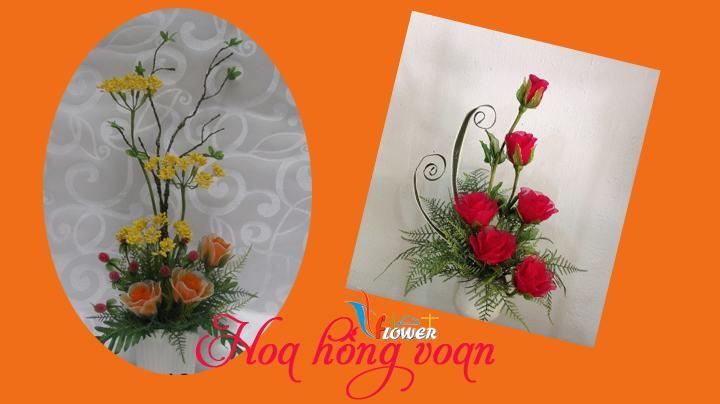 hoa-hong-bang-vai-voan (1)
