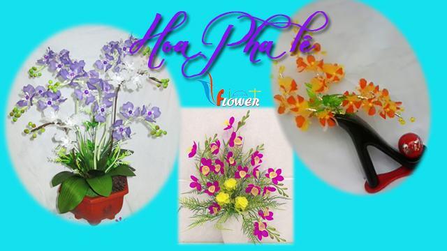 hoa-pha-le