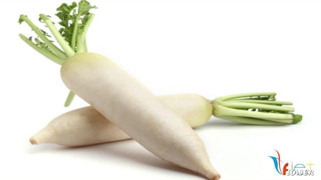 cách chọn củ cải trắng để cắt tỉa