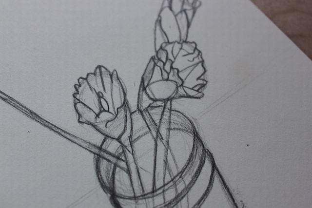 hình vẽ hoa cẩm chướng bằng bút chì