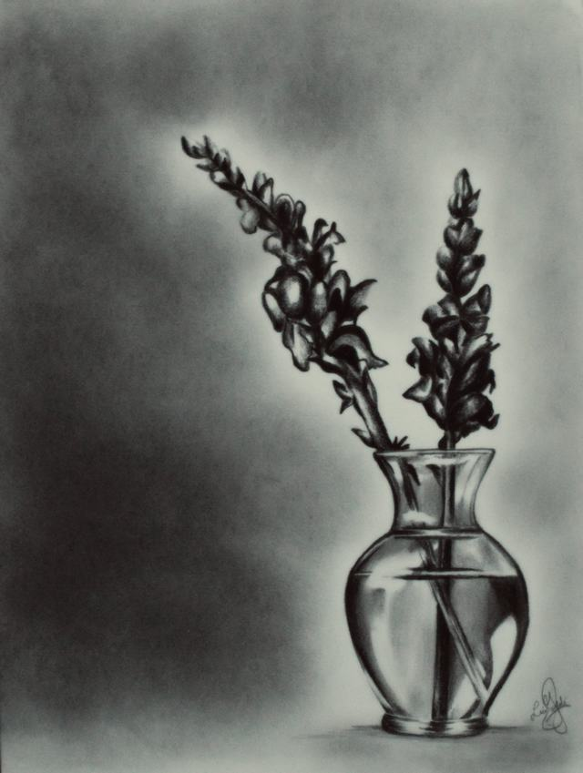 hình vẽ hoa mõm sói bằng bút chì