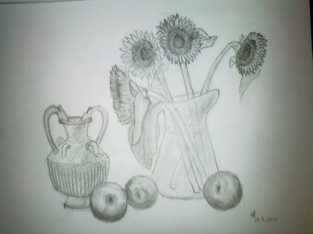 hình vẽ hoa hướng dương điệu bút chì