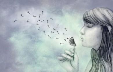 hình vẽ hoa bồ công anh bằng bút chì