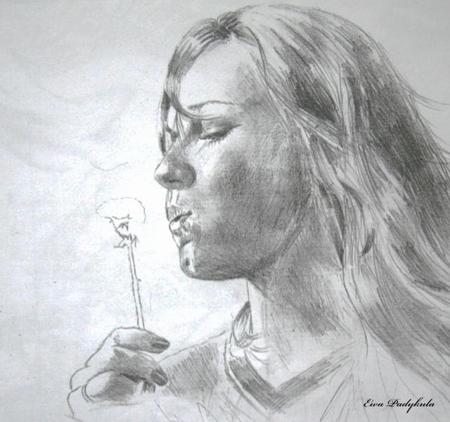 hoa-bo-cong-anh-bang-but-chi-Dandelion-pencil (8)