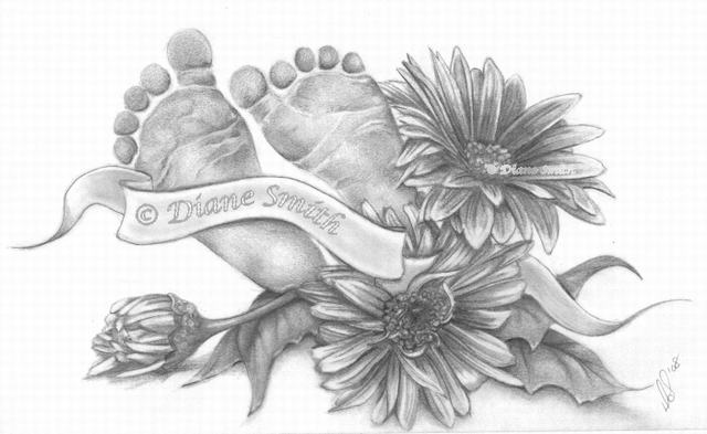 hoa-cuc-pencil-daisy (5)