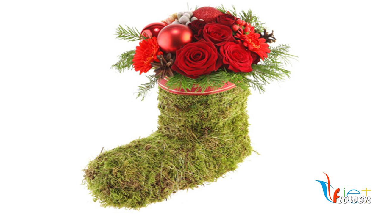 Bó hoa giáng sinh
