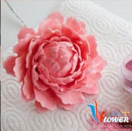 Làm hoa handmade từ đất sét